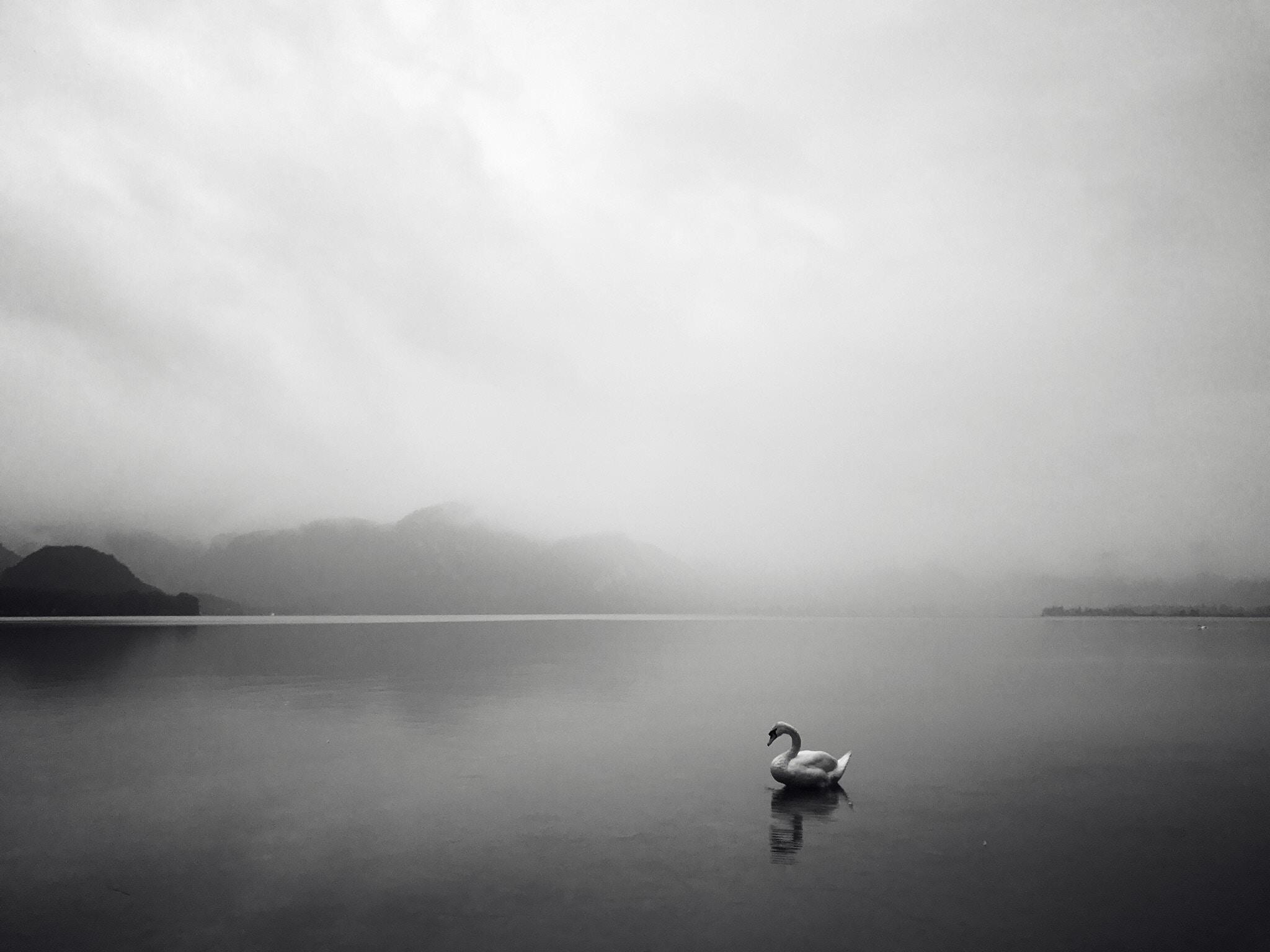 The gift of stillness